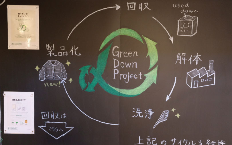 Green Down Project 参加